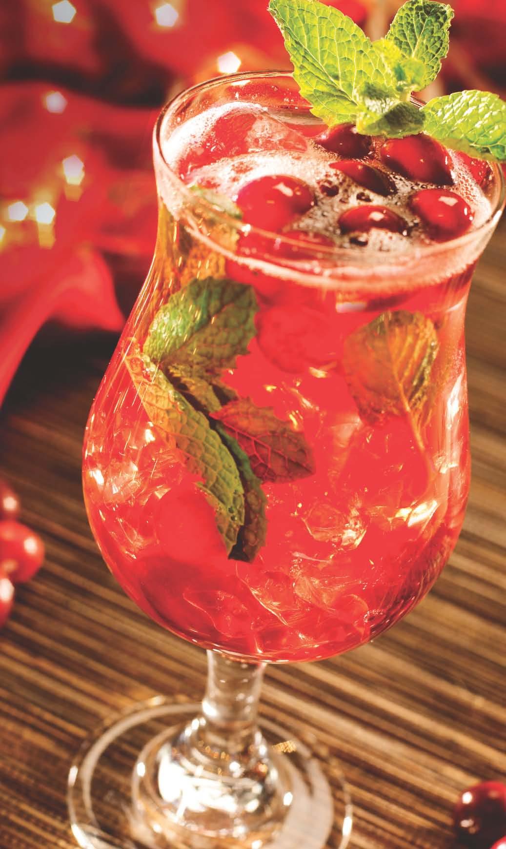 Cranberry Mojito Recipe — Dishmaps